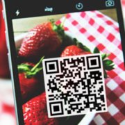 Online Seminar : « Mobile-based traceability system for sustainable food supply networks ».